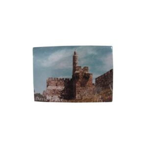 David Tower Picture Magnet 2.1*3.0 Inches PM26