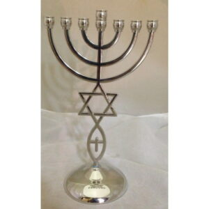 Menorah With Star Of David & Fish Silver Color