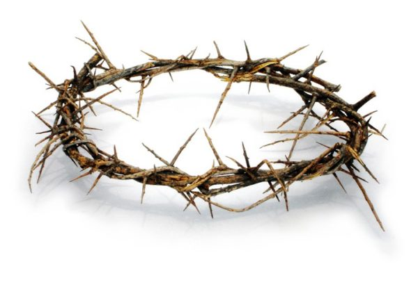 Crown Of Thorns From The Holy Land