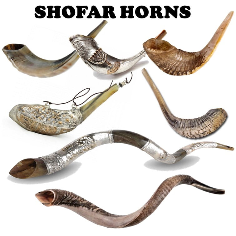 Shofar Horns